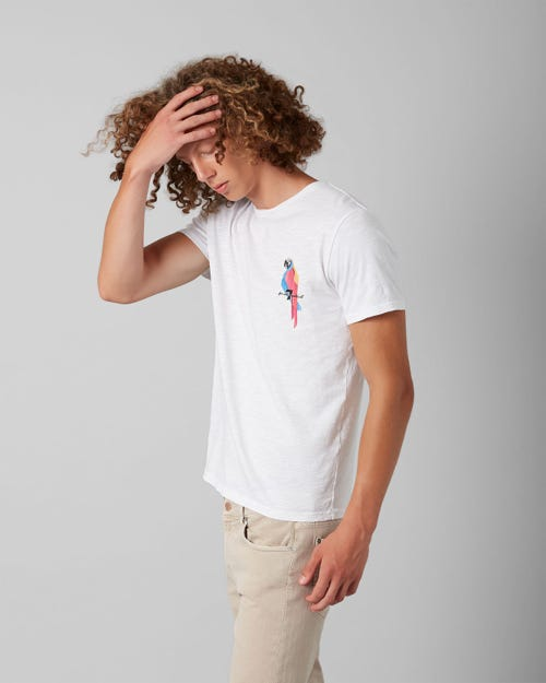 7 For All Mankind - Graphic Tee Slub Parrott White